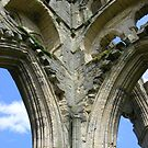 Rievaulx Abbey columns - North Yorkshire by monkeyferret