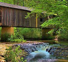 Coheelee Creek Covered Bridge by Janie Oliver