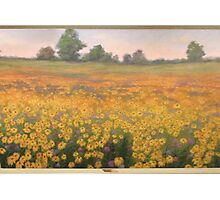 Wildflower mural. Photographic Print