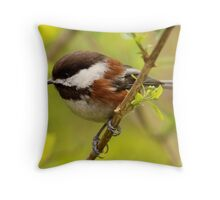 Dainty Feathered Skimmer Poised for Flight Throw Pillow
