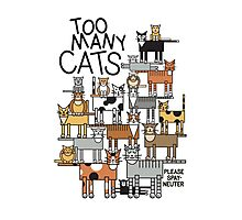 Too Many Cats Photographic Print