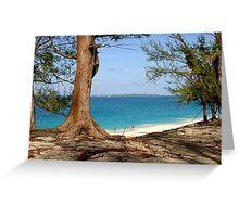 Nassau, Bahamas Greeting Card
