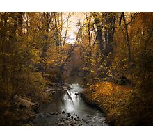 River View Photographic Print