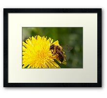 at work... Framed Print