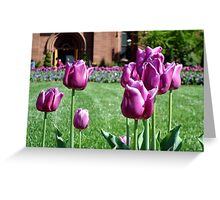 Garden View    ^ Greeting Card
