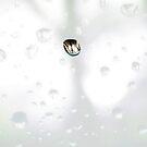 Raindrop by DExPIX