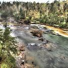 Little River Canyon by Noble Upchurch