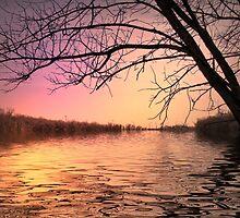 Serenity by kenspics