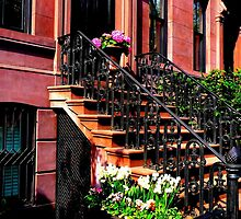 Flowers on a stoop by ShellyKay