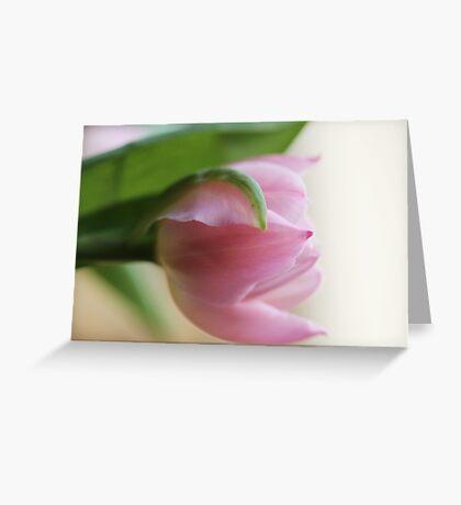 Pastel Pink Greeting Card