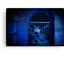 In The Spider's Web Canvas Print