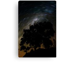Spinning Tree Canvas Print