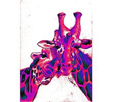 Psychedelic Giraffes Photographic Print