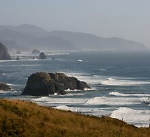 Oregon Coast by ehrenz