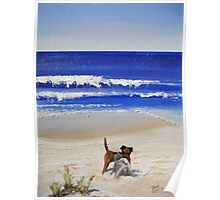 Beach Series - Two dogs Poster