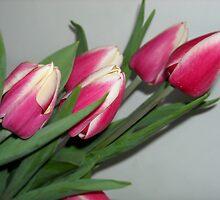 Spring Treasures by Rebecca Bryson