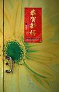 Yellow Door - Taipei by Barbara Burkhardt
