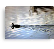 Floating Silhoutte Canvas Print