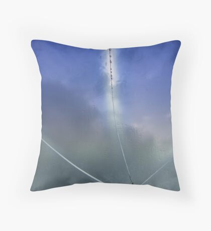 Cracked Beauty Throw Pillow