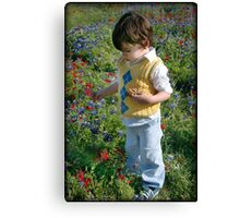 Texas Wildflowers.... Canvas Print