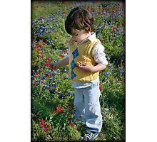 Texas Wildflowers.... Photographic Print