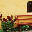 A bench in the sunshine by Heather Thorsen