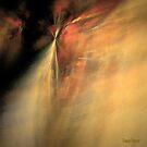 Rings of Fire by Dana Roper