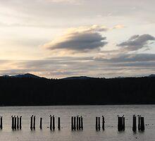 Tahuya sunset by CherylC