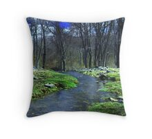 Springtime in New England Throw Pillow