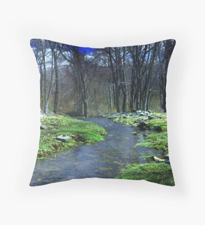 Springtime in New England Throw Pillow