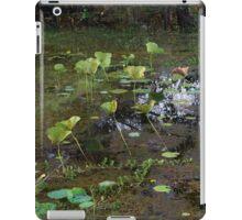 Wetlands of Darwin iPad Case/Skin
