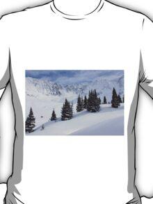 Mayflower Gulch T-Shirt