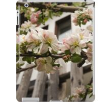 Facades and Fruit Trees - the Villa and the Apple iPad Case/Skin