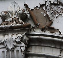 fixer upper by Steve Scully