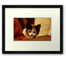Ummm... Oh hai! I wuz just lissening to you..  Framed Print