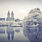 View at Central Park - Infrared by Eric Lam