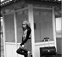 Traveler by Lauren Neely