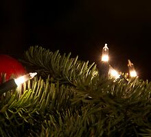 Christmas light by Nordlys