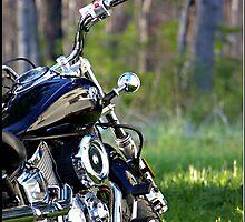 Dad's Harley by Lauren Neely