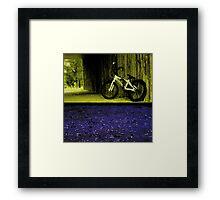 felt racing  Framed Print