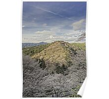 The cherry blossom trees mountain Poster