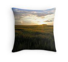 Field in sunset Throw Pillow