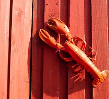 Red lobster by Nordlys