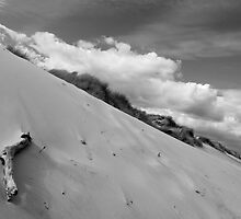 Dune by Paul Berry