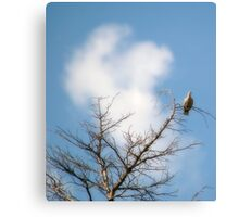 High Above It All Canvas Print