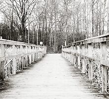 Winter Boardwalk by StefBrown