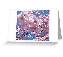 Blossom sky Greeting Card