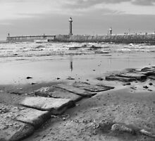 Beach Steps, Whitby. by StephenRB