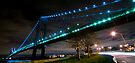 Verrazano-Narrows Bridge by Svetlana Sewell