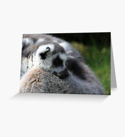 Sleeping Lemar Greeting Card